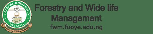 logo-fwm